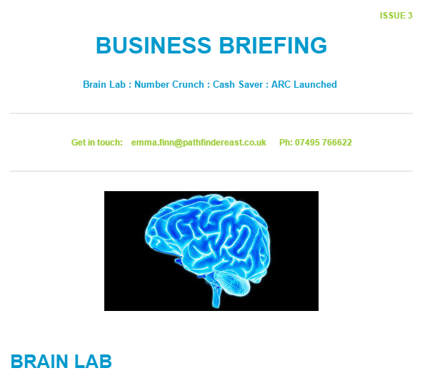 New Business Briefing