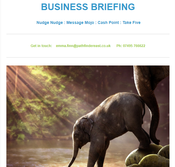 Read our New Business Briefing